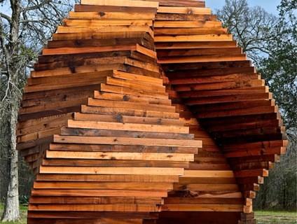 TEMPO-Tree Huggers